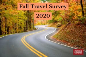 Fall Travel Survey for 2020